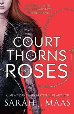 A Court of Thorns and Roses in Pakistan